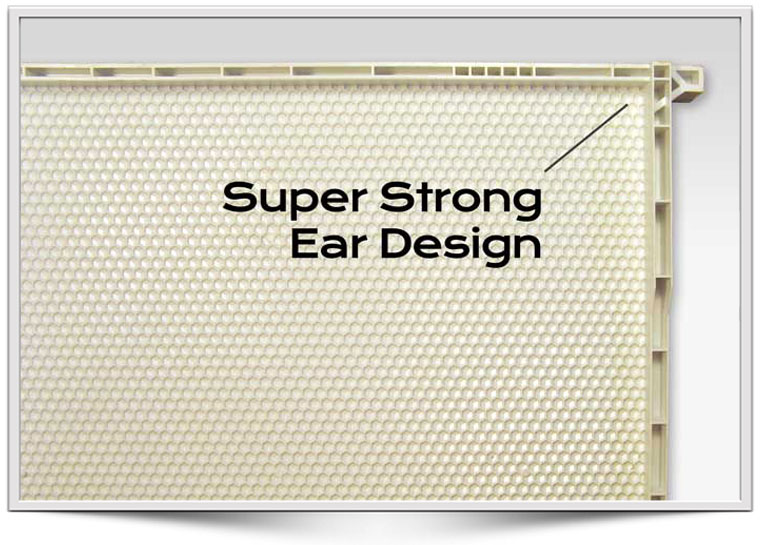 Acorn Beekeeping ear design